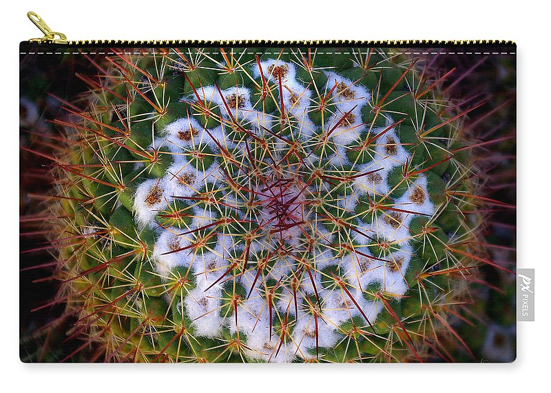 Cactus Carry-all Pouch featuring the photograph Cactus Radiance by Vicki Pelham