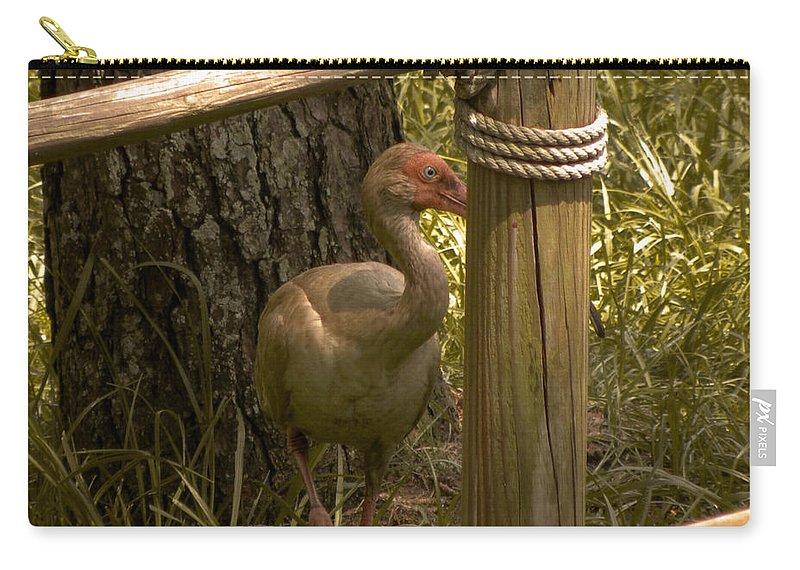 Bird Carry-all Pouch featuring the photograph Cagney by Trish Tritz