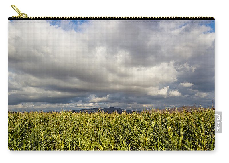 Agriculture Carry-all Pouch featuring the photograph California Cornfield by Heidi Smith