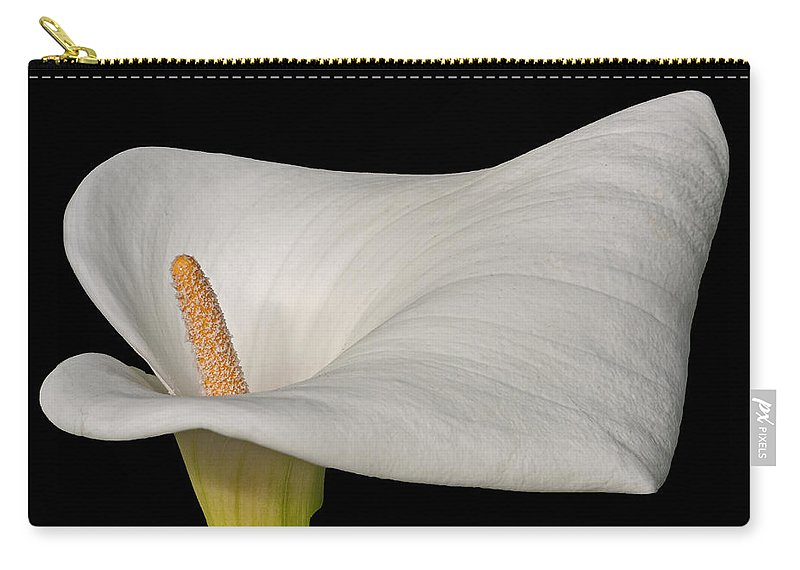 Calla Carry-all Pouch featuring the photograph Calla Lily Flower by David Pringle