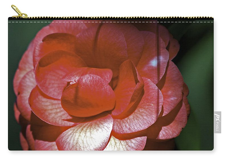 Camellia Carry-all Pouch featuring the photograph Camellia Three by Ken Frischkorn