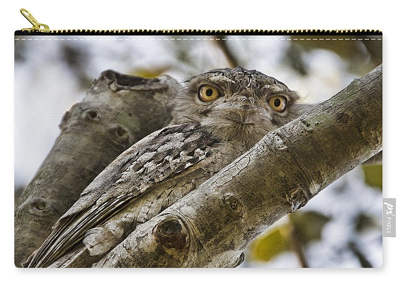 Tawny Frogmouth Carry-all Pouch featuring the photograph Camouflaged V3 by Douglas Barnard