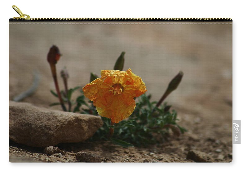 Canyonlands Carry-all Pouch featuring the photograph Canyonlands National Park by Benjamin Dahl