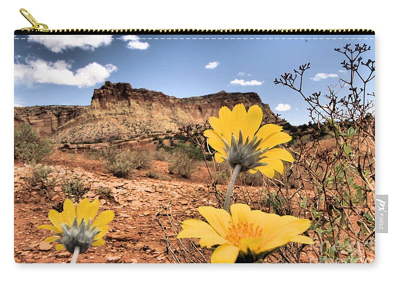 Capitol Reef National Park Carry-all Pouch featuring the photograph Capitol Flowers by Adam Jewell