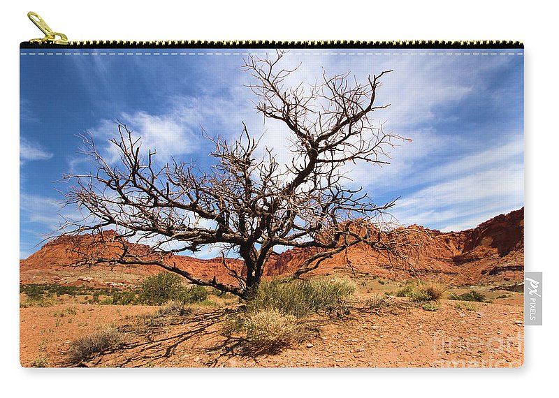Dead Trees Carry-all Pouch featuring the photograph Capitol Tree by Adam Jewell