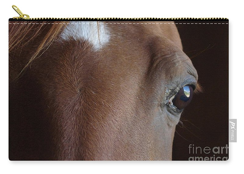 Horse Carry-all Pouch featuring the photograph Caravaggio 02 by J M Lister
