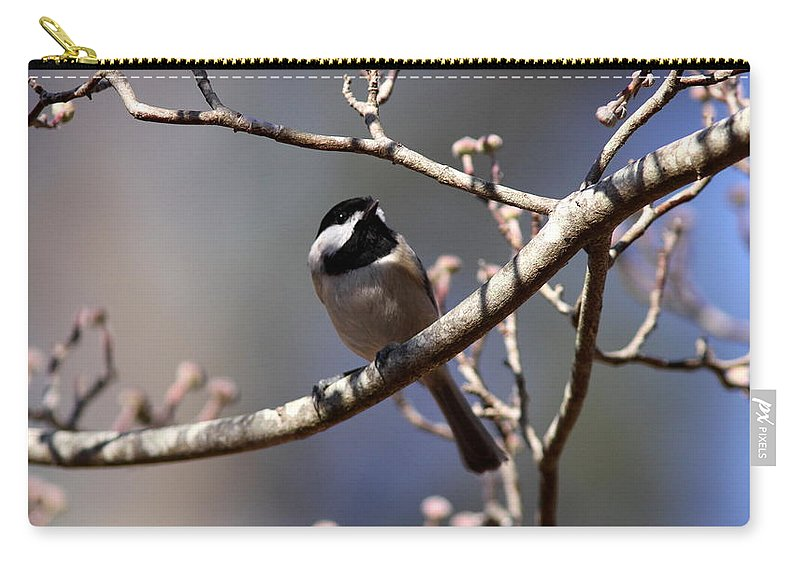 Nature Carry-all Pouch featuring the photograph Carolina Chickadee - Glamour Shot by Travis Truelove