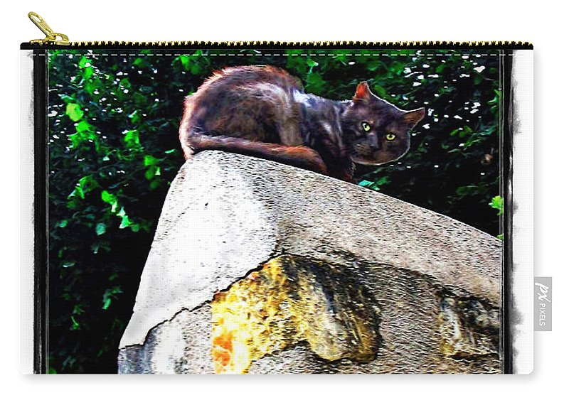 Cat Carry-all Pouch featuring the photograph Cat On Medieval Wall by Joan Minchak