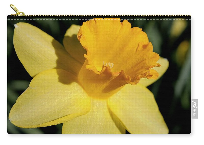 Daffodil Carry-all Pouch featuring the photograph Catching Some Rays by Betty Northcutt