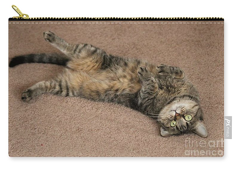 Animal Carry-all Pouch featuring the photograph Catnip by Michelle Powell