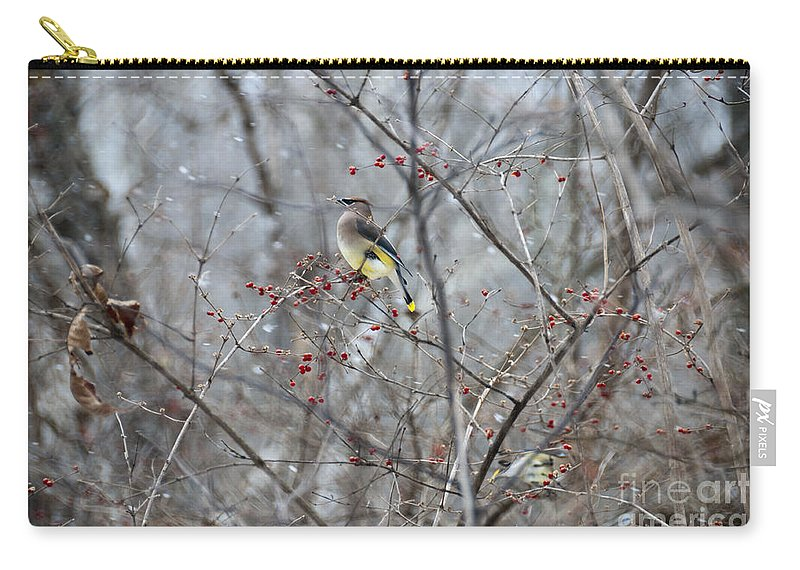Bird Carry-all Pouch featuring the photograph Cedar Wax Wing 3 by David Arment