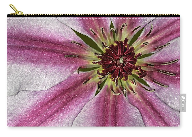 Flower Carry-all Pouch featuring the photograph Center Of It All by Susan Candelario