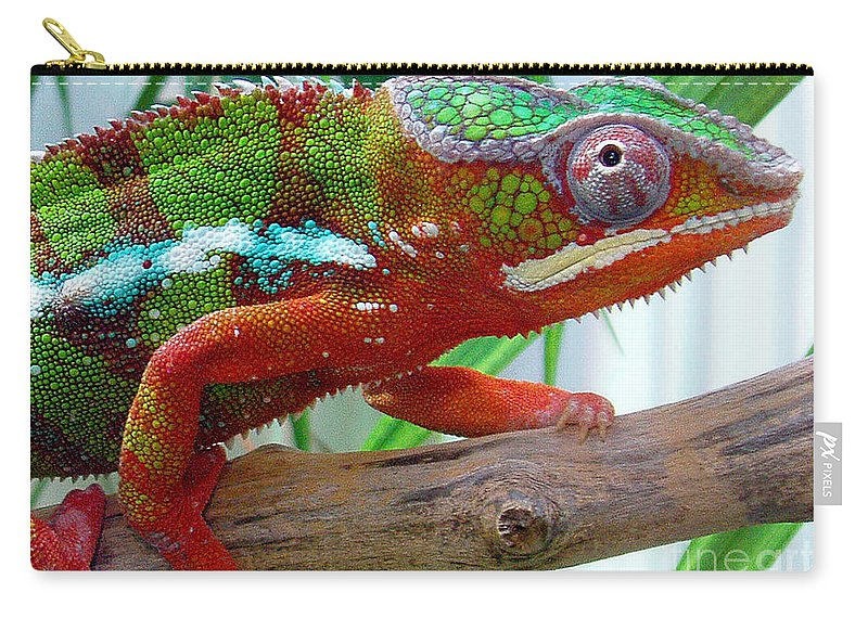 Chameleon Carry-all Pouch featuring the photograph Chameleon Close Up by Nancy Mueller