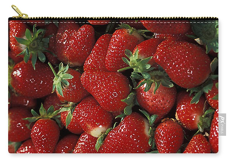Strawberry Carry-all Pouch featuring the photograph Chandler Strawberries by Photo Researchers