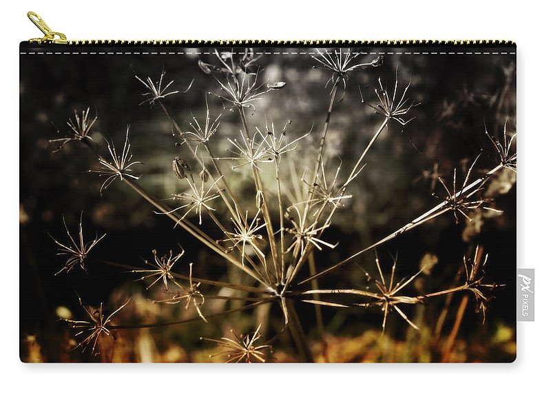 Change Carry-all Pouch featuring the photograph Changes by Ellen Heaverlo