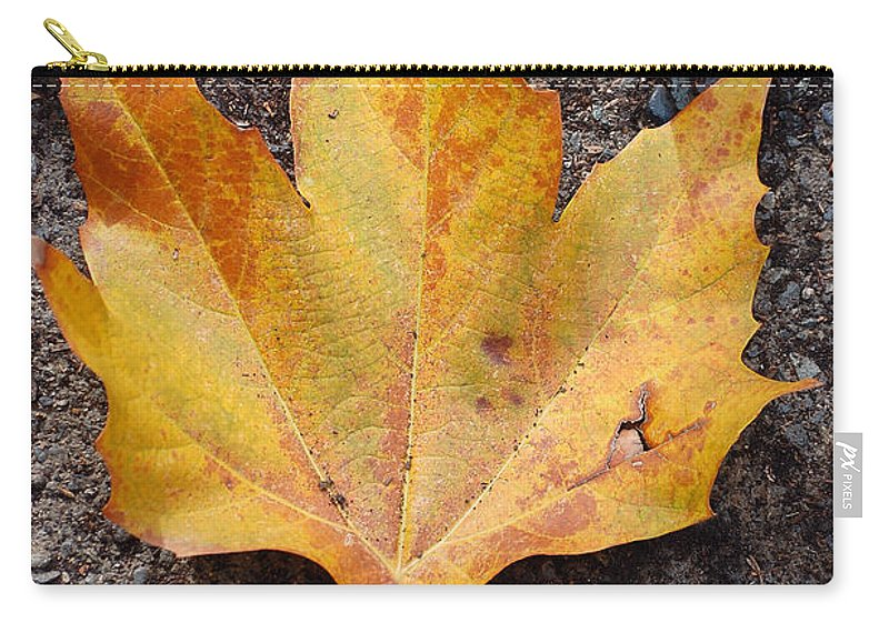 Cheerio Leaf Fall Ground Dirt Colors Chico Ca Carry-all Pouch featuring the photograph Cheerio Leaf by Holly Blunkall