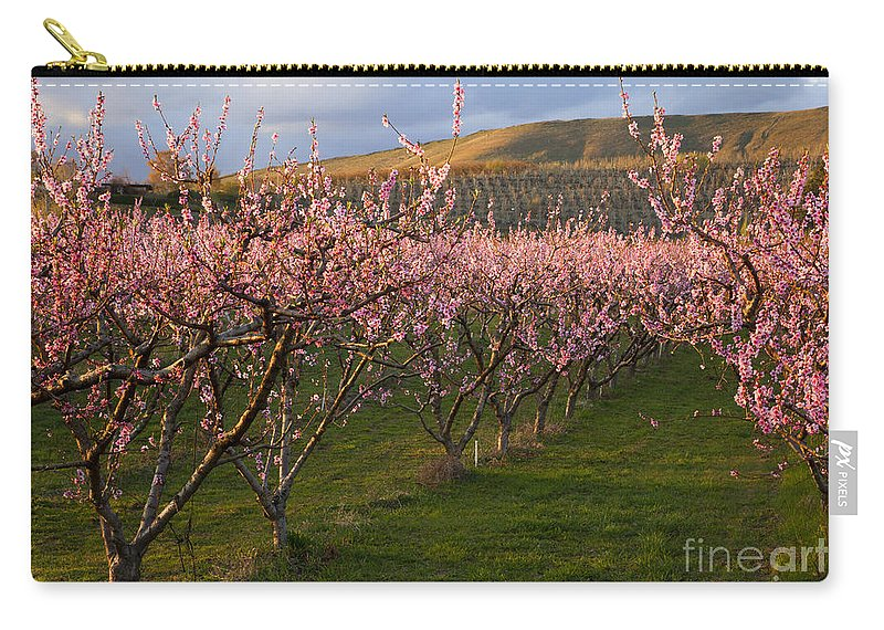 Cherry Carry-all Pouch featuring the photograph Cherry Blossom Pink by Mike Dawson