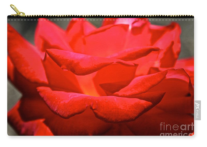 Flower Carry-all Pouch featuring the photograph Cherry Red Rose by Susan Herber