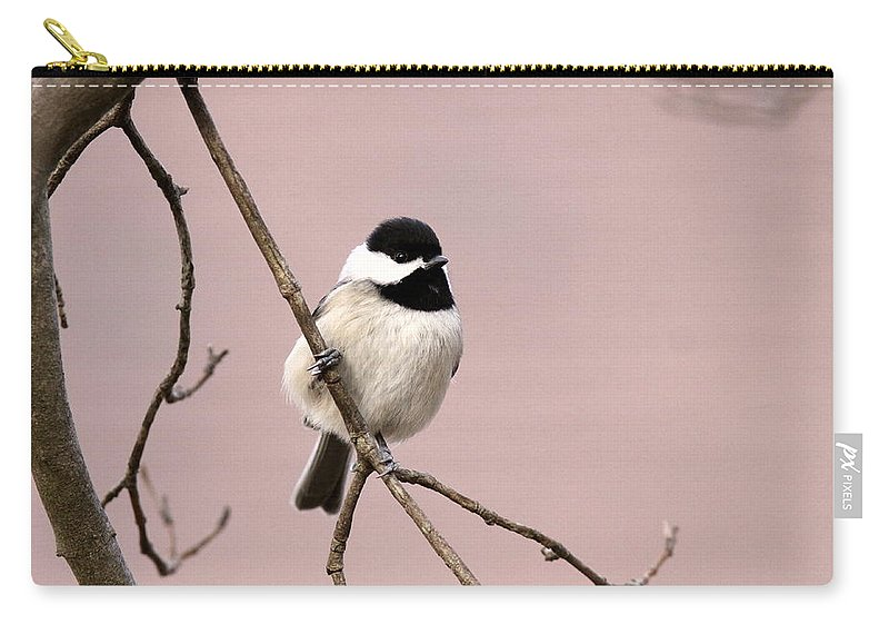 Carry-all Pouch featuring the photograph Chick In Pink by Travis Truelove
