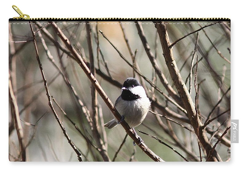 Nature Carry-all Pouch featuring the photograph Chickadee Sunshine by Travis Truelove