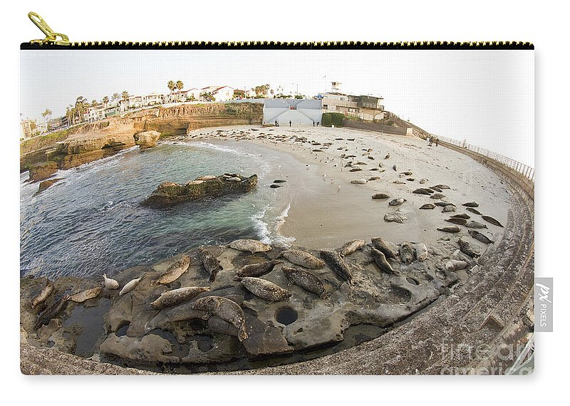 La Jolla Carry-all Pouch featuring the photograph Children's Pool 1 by Daniel Knighton