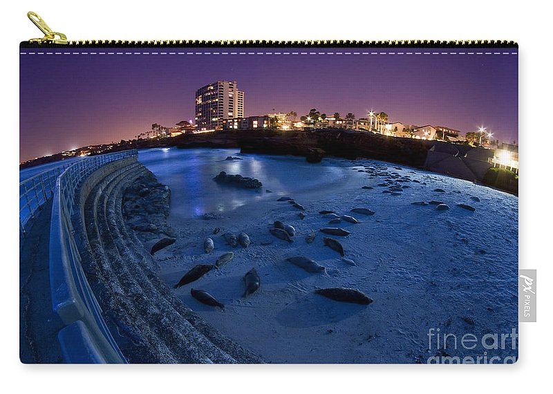La Jolla Carry-all Pouch featuring the photograph Children's Pool 6 by Daniel Knighton