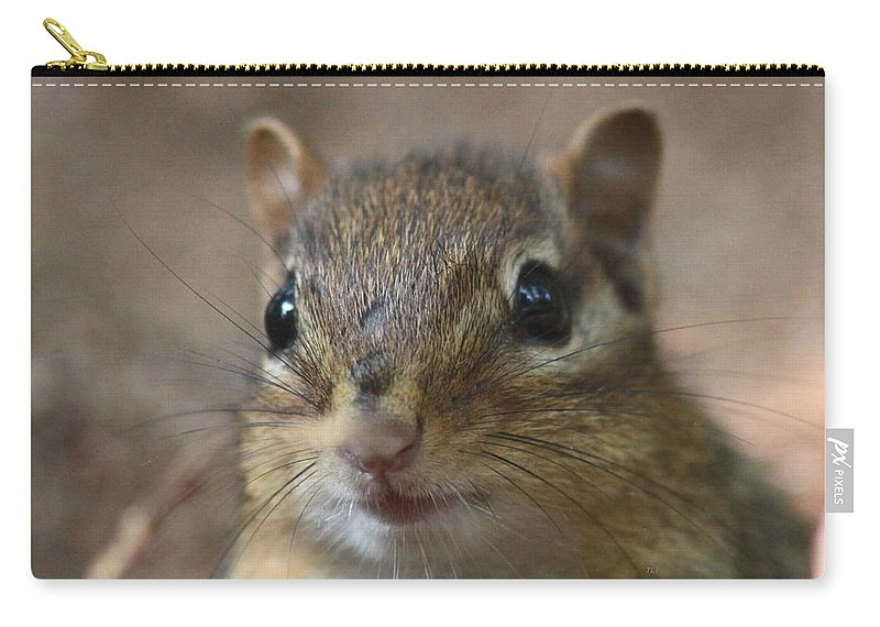 Chipmunk Carry-all Pouch featuring the photograph Chip by Travis Truelove