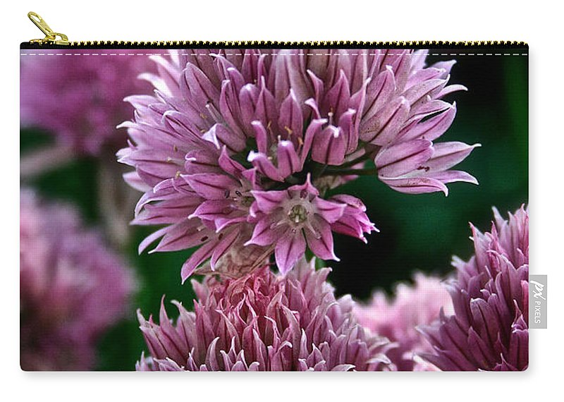 Plant Carry-all Pouch featuring the photograph Chive Blossom by Susan Herber