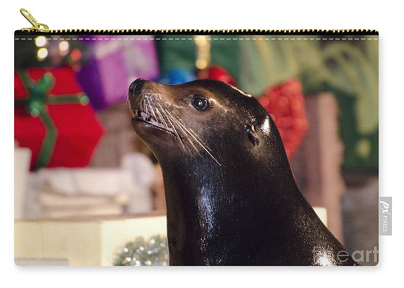 Sea Lion Carry-all Pouch featuring the photograph Christmas Sea Lion by Jim And Emily Bush