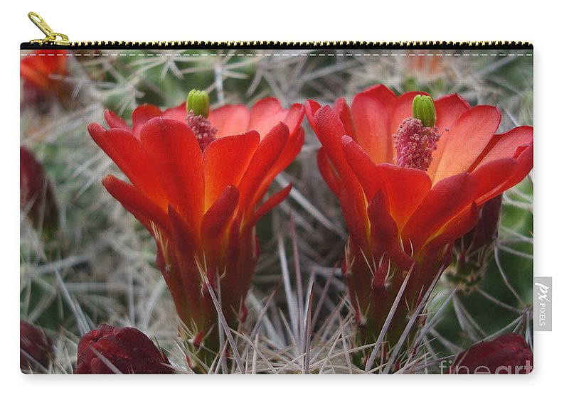 Nature Carry-all Pouch featuring the photograph Claret Cup Duo by Maili Page