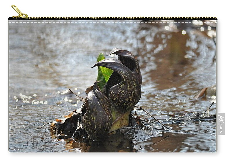 Water Carry-all Pouch featuring the photograph Claw Plant by Kari McDonald