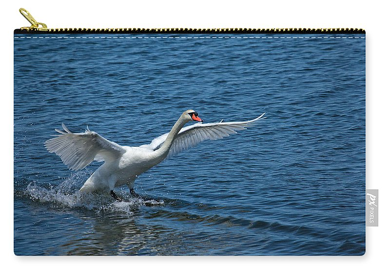 Swan Carry-all Pouch featuring the photograph Clean Landing by Karol Livote