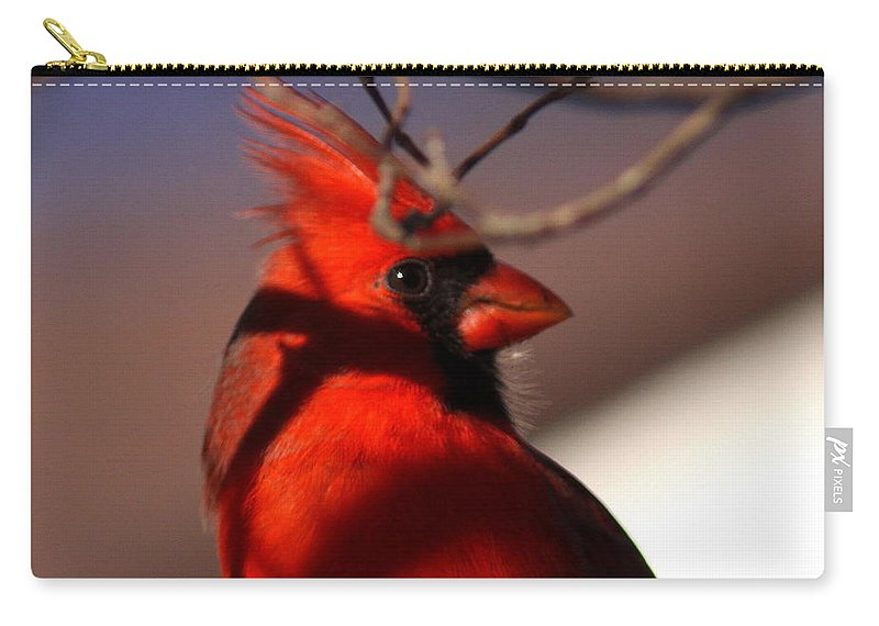 Nature Carry-all Pouch featuring the photograph Click by Travis Truelove