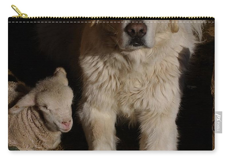 Great Pyrenees Carry-all Pouch featuring the photograph Close Personal Protection by Charles and Melisa Morrison