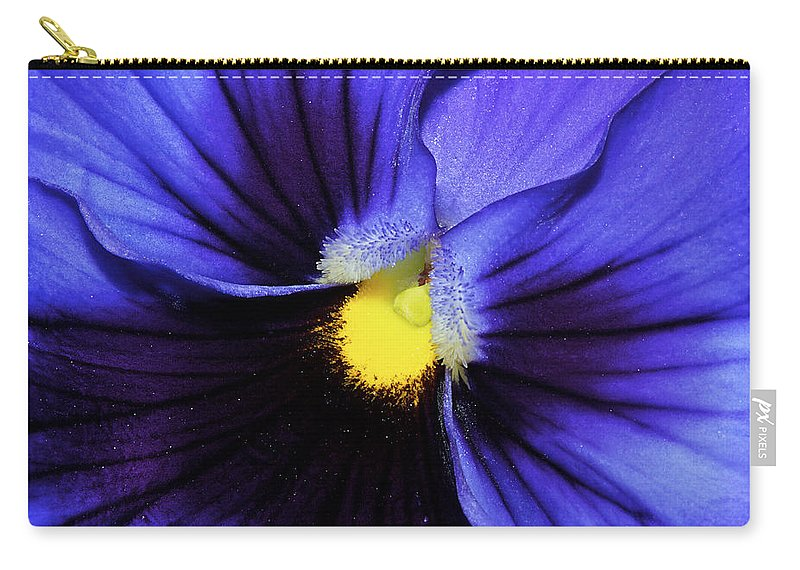Pansy Carry-all Pouch featuring the photograph Cobalt Blue Pansy by Phyllis Denton