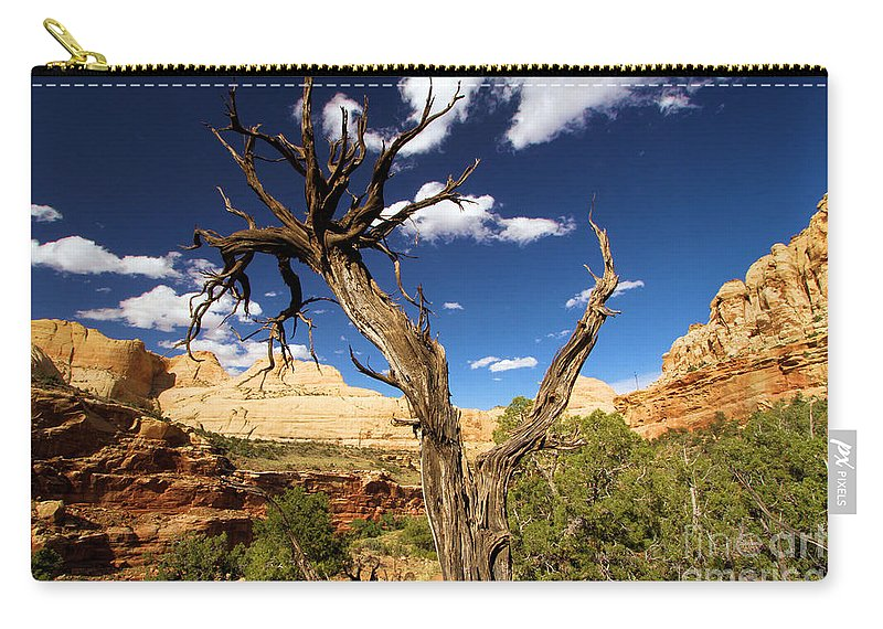 Capitol Reef Carry-all Pouch featuring the photograph Cohab Canyon At Capitol Reef by Adam Jewell