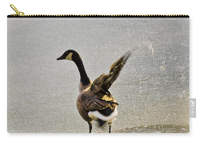 Usa Carry-all Pouch featuring the photograph Cold Goose Bath by LeeAnn McLaneGoetz McLaneGoetzStudioLLCcom