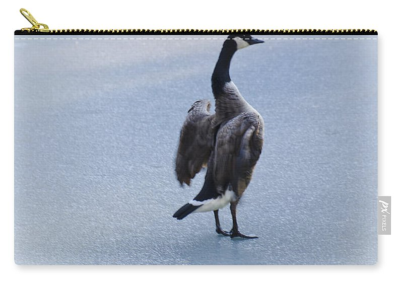 Usa Carry-all Pouch featuring the photograph Cold Goose Dreams by LeeAnn McLaneGoetz McLaneGoetzStudioLLCcom