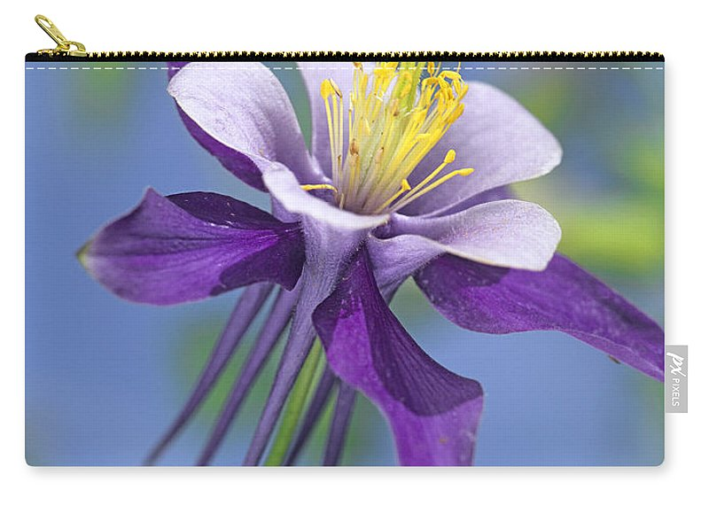 00176669 Carry-all Pouch featuring the photograph Colorado Blue Columbine Close by Tim Fitzharris