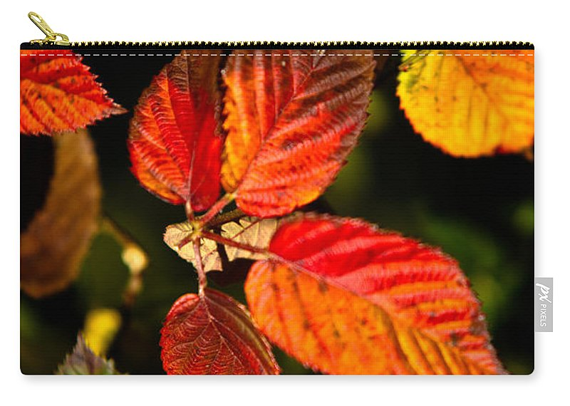 Rubus Carry-all Pouch featuring the photograph Colorful Blackberry Leaves 1 by Douglas Barnett