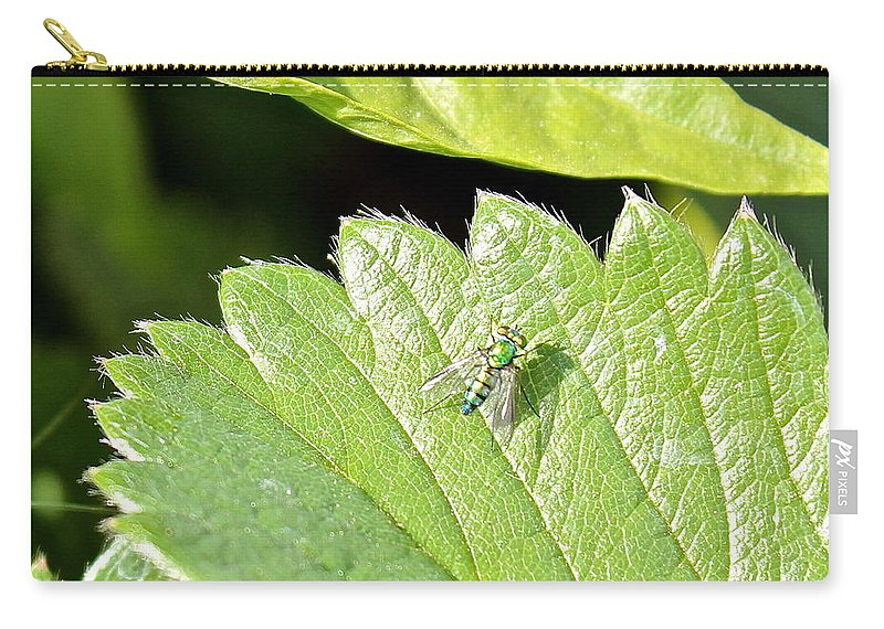 Colorful Carry-all Pouch featuring the photograph Colorful Garden Fly 2 by Kume Bryant