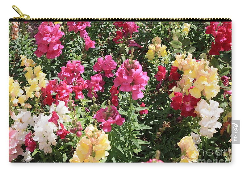 Snapdragons Carry-all Pouch featuring the photograph Colorful Snapdragons In San Antonio by Carol Groenen