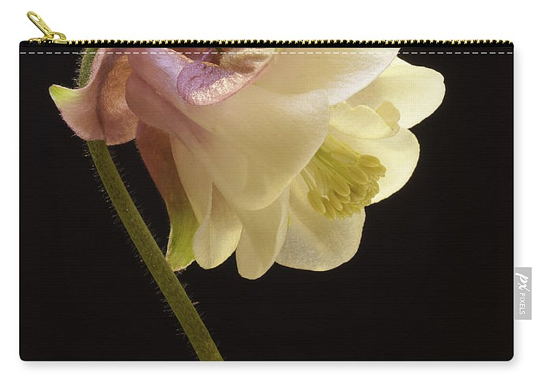 Flower Carry-all Pouch featuring the photograph Columbine by Fran Gallogly