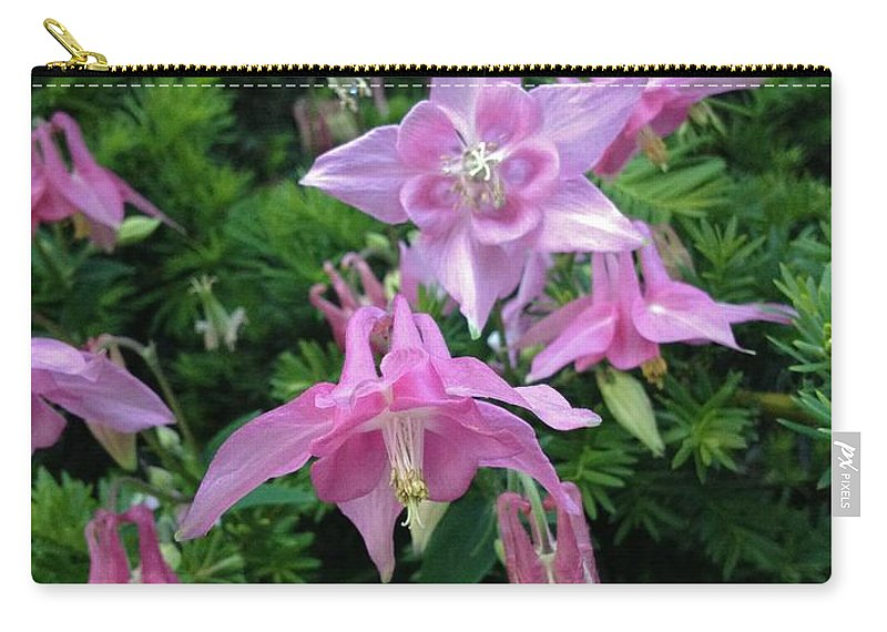 Columbine Carry-all Pouch featuring the photograph Columbine by Joseph Yarbrough