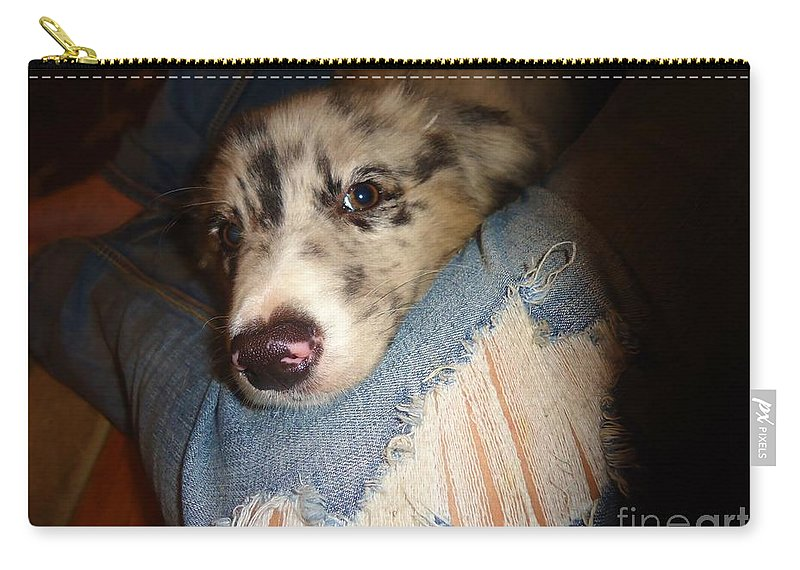 Puppy Carry-all Pouch featuring the photograph Comfy Blues by Art Dingo