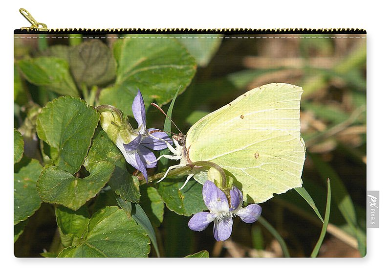 Common Brimstone. Sitruunaperhonen Carry-all Pouch featuring the photograph Common Brimstone by Jouko Lehto