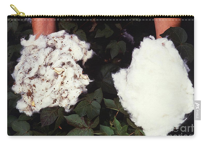 Cotton Carry-all Pouch featuring the photograph Cotton Comparison by Photo Researchers