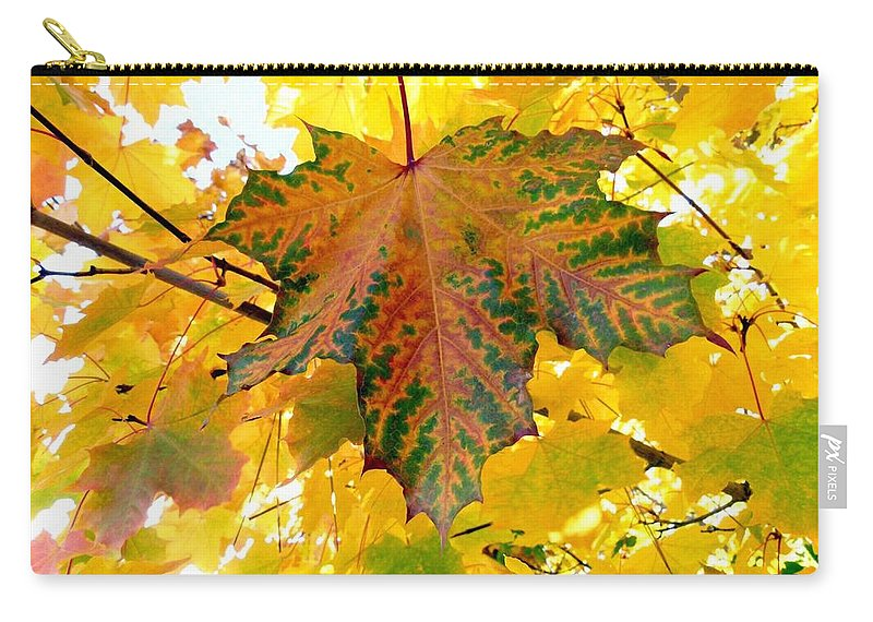 Autumn Carry-all Pouch featuring the photograph Country Color 21 by Will Borden