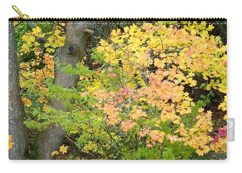 Autumn Carry-all Pouch featuring the photograph Country Color 23 by Will Borden