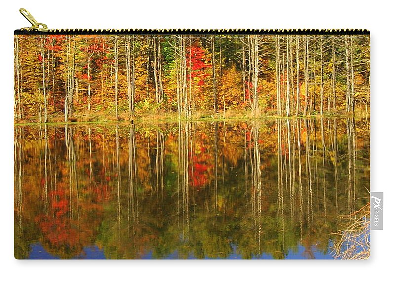 Fall Carry-all Pouch featuring the photograph Coxsackie Reflection by Mark Gilman